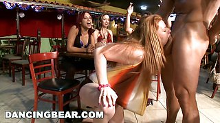 Horny Stripping Dancing Bear