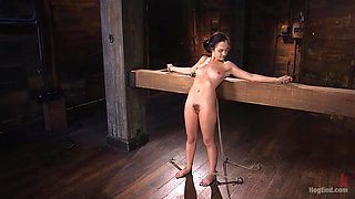 brunette babe roxanne getting punished by the executor