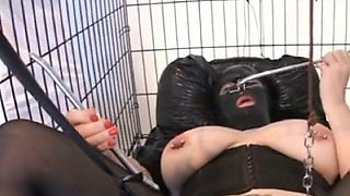 Pierced Pussy in cage
