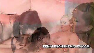 Karen Visconti Shemale Female Sex