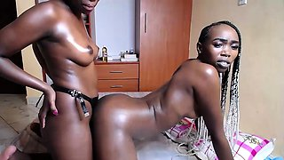 Three hot African girls fuck each outer with strapon live at